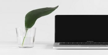 Image of a laptop sitting on a desk next to a glass of water. the glass of water has a large green leaf growing in it: this article is about content marketing.